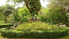 Big Bee Farm Phuket
